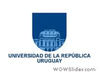 logo_UDELAR_rect